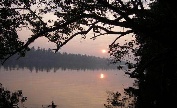 Retraite de yoga en Inde du Sud